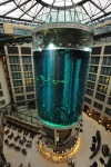 gigantskiy-akvarium-10