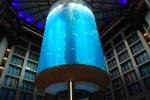 gigantskiy-akvarium-13