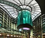 gigantskiy-akvarium-22