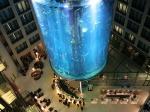 gigantskiy-akvarium-27