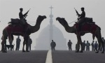 Security forces on Camel rehearse action against possible disturbances during the preparations for the celebration of Republic Day in Delhi, India