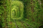 Huge trees surround the old railway tunnel in the Ukrainian village of Klevan. This is a magical place nicknamed Tunnel of Love, as it is often visited by couples in love