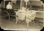 Photo taken around 1916. Globe, Arizona.