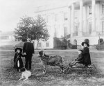 The Harrison children enjoying a day on the south lawn on their goat-drawn cart, circa 1891 (Library of Congress - Frances Benjamin Johnston)