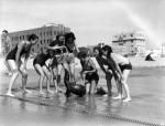 1931-Feeding Seal on Beach