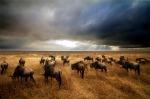 Ngorogoro ligths by Gabriele Ferrazzi