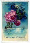 rosemoonlight1