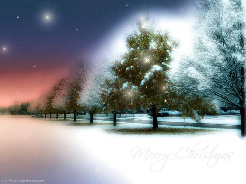 CHRISTMASS WAL (11)