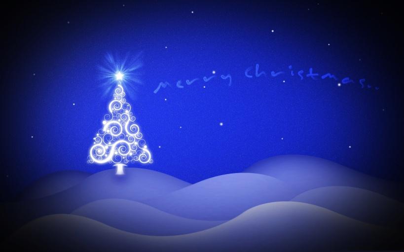 CHRISTMASS WAL (9)