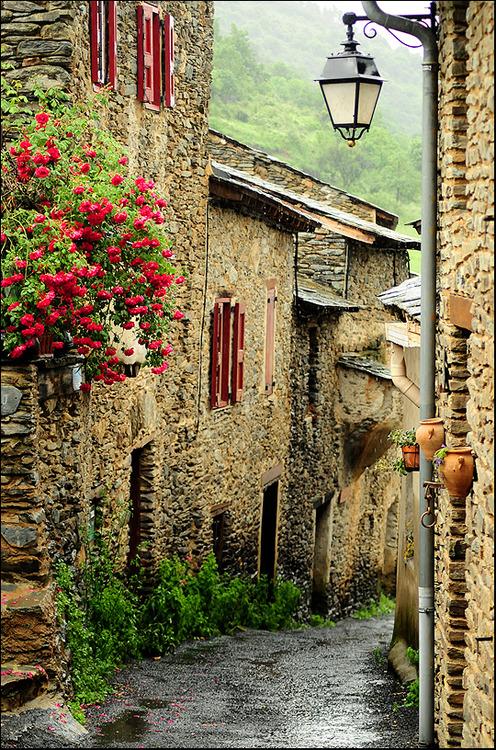 Medieval, Évol, France