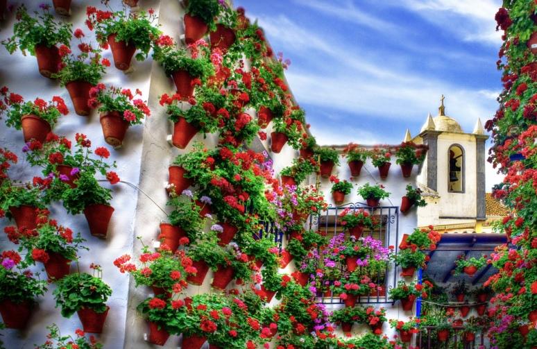 City of Flowers, Córdoba  Spain (by Zú Sánchez)