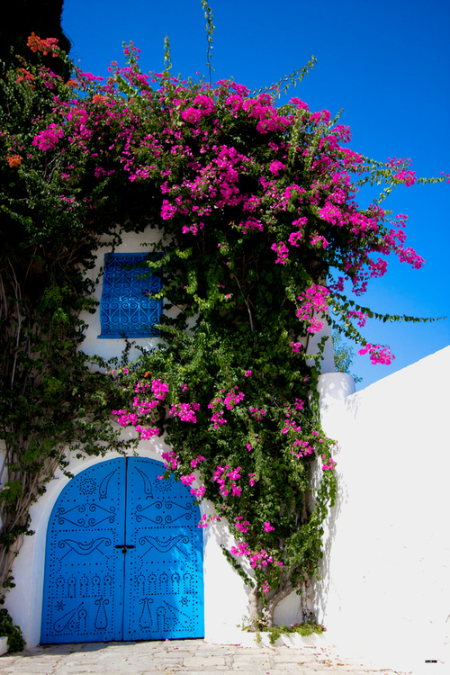 Sidi Bou Said Tunisia (by EdbE PhOToGrAphY)