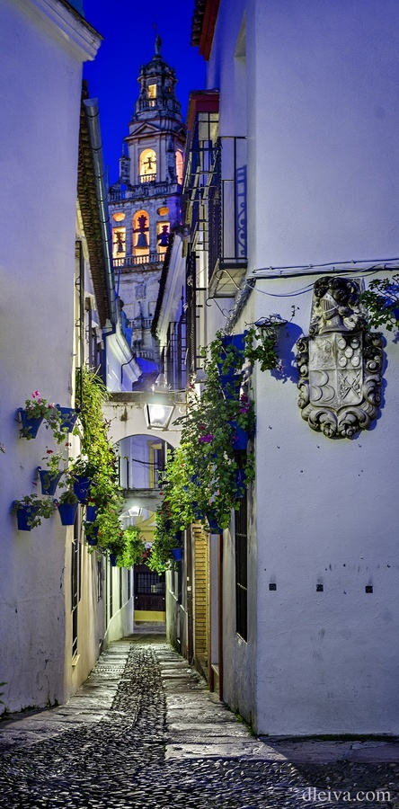 Callejón de las Flores, Córdoba, Spain